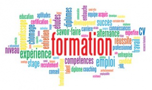 Dispositifs de formation